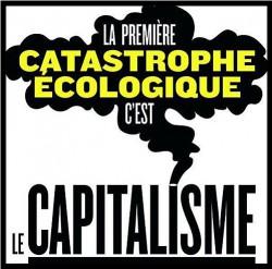 cata-ecolo-capital